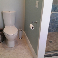 toilet-beside-shower